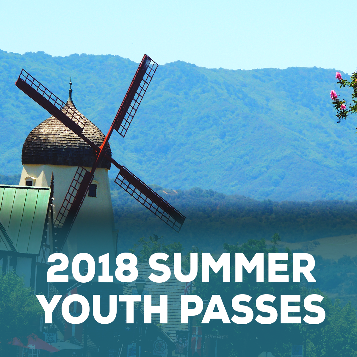 Newsletter graphic_June 2018 Summer youth passes